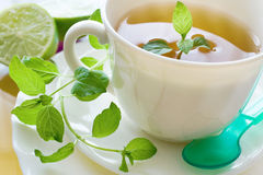 Black tea with a fresh lemon and mint Stock Photography