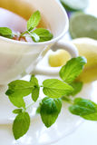 Black tea with a fresh lemon and mint Stock Images