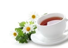 Black tea with fresh mint leaves and daisy Royalty Free Stock Image