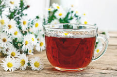 Black tea in a glass cup and chamomile flowers Royalty Free Stock Photos