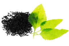Black tea with leaf Royalty Free Stock Image
