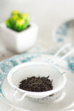 Black tea, leaves. Oriental Tea with chocolate muffins on elegant porcelain dish Stock Photos