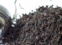 Black tea leaves pile. Earl gray tea. Black tea leaves. Earl gray tea in a pile on a white backround with accessories close up photography. Details royalty free stock images