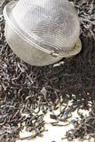 Black tea leaves with tea strainer Stock Photography