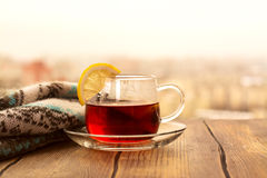 Black tea with lemon slices in a glass cup Royalty Free Stock Photos