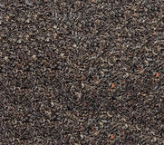 Black tea loose dried tea leaves, marco Royalty Free Stock Photography
