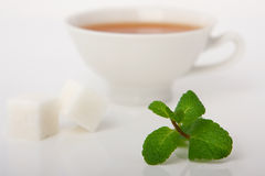 Black tea with mint Stock Photography