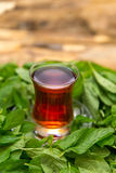 Black tea on mint leafs Royalty Free Stock Images