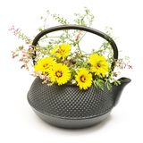 Black tea pot with yellow and pink flowers bouquet on white background stock image