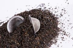 Black tea and tea strainer on white background. Stock Photos