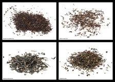 Black tea Royalty Free Stock Images