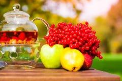 Black tea with viburnum, fruit, garden Stock Photo