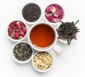 Black Tea in White Cup Stock Photography