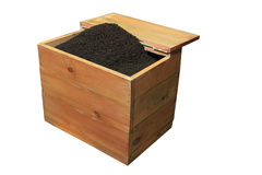 Black tea in a wooden box. Royalty Free Stock Image