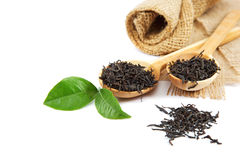 Black tea in a wooden spoon and green lemon leaves. Royalty Free Stock Photos