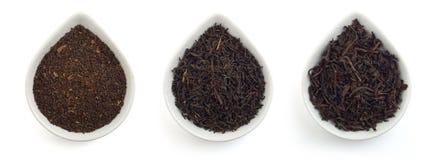 Black teas Stock Photos