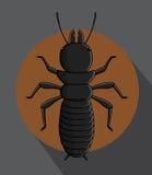 Black Termite Vector Stock Image