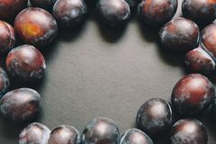 Black textured background with plums around. Can be used as background for different art Royalty Free Stock Image