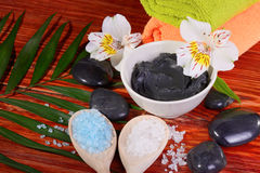 Black therapeutic clay Stock Images