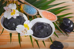 Black therapeutic clay Royalty Free Stock Photography