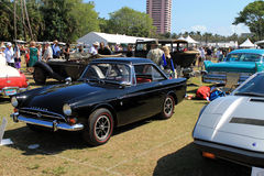 Black tiger at classic car event Stock Images