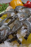 Black tiger prawns. Black tiger prawn half cut Royalty Free Stock Images