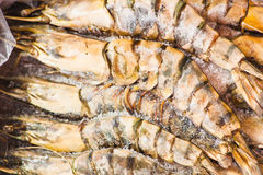 Black Tiger Prawns. As closeup on a paper box Stock Photography