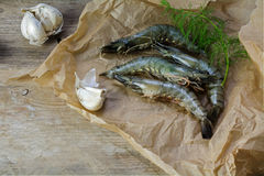 Black tiger prawns fresh from the fish market on paper on a rust Stock Images