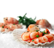 Black Tiger Prawns on snow Stock Photography