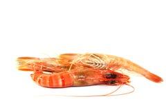 Black Tiger Shrimp Stock Photos