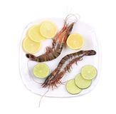 Black tiger shrimps with lemon. Stock Photography