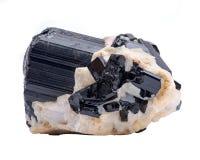 Black Tourmaline Point & Babies Nestled in Feldspar From Brazil, isolated on white. Background stock images