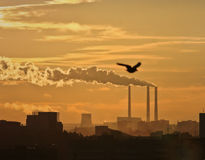 Black toxic smoke from chemical plants. Sunset Royalty Free Stock Photography