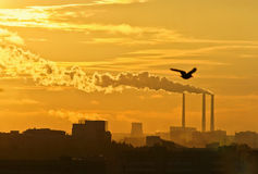 Black toxic smoke from chemical plants. Sunset Stock Images