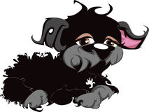 Black Toy Dog Lying Down Stock Image