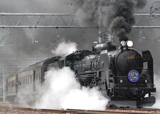 Black Train on Rail and Showing Smoke Royalty Free Stock Photos