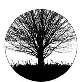 Black tree background Stock Images