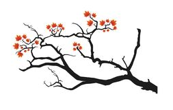 Black tree branch. In white background. file is included stock illustration