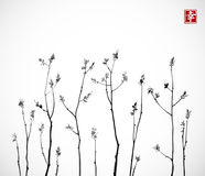 Black Tree branches with fresh leaves on white background. Traditional oriental ink painting sumi-e, u-sin, go-hua Stock Images