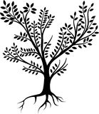 Whole black tree with leafs and roots. Black Tree icon with roots and leafs, vector illustration in white background Stock Photos