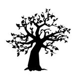 Black tree with leaves silhouette on white Stock Images