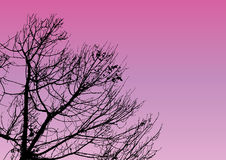 Black tree with purple background Royalty Free Stock Image