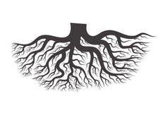 Black tree root. stock illustration