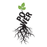 Black  Tree, Roots and text POWER Royalty Free Stock Photos
