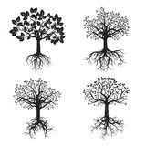 Black Tree and Roots. Vector Illustration. Stock Photos