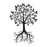Black Tree and Roots. Vector Illustration. Royalty Free Stock Image