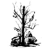 Black tree silhouette isolated on white background. Vector Stock Photo
