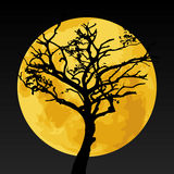 Black tree silhouette on yellow moon Royalty Free Stock Photo
