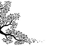 Black tree silhouette for your design Stock Photos