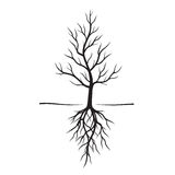 Black Trees and Roots. Vector Illustration. Black Naked Trees and Roots. Vector Illustration Royalty Free Stock Photography